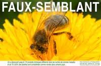 """Campagne de communication """"FAUX SEMBLANT"""" de l'EBR-T"""